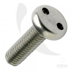 2-Hole Security Screws