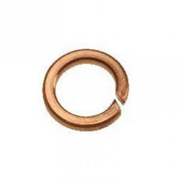 M6  Spring  Washers  Phosphor  Bronze