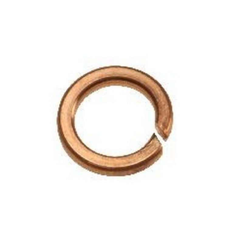 M6 Spring Washers Phosphor Bronze (Pack of 10)