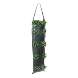 Hanging Grow Tube 700 x 220mm [Pack of 2]